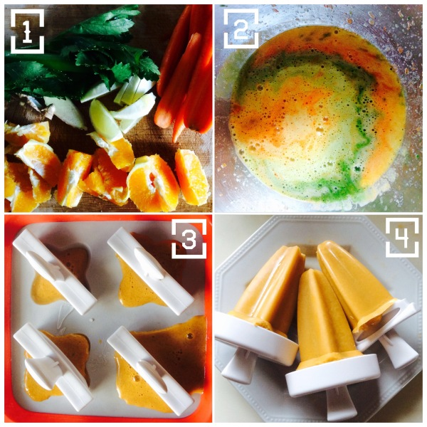 Wellbeing Wednesday - juice ice blocks recipe image