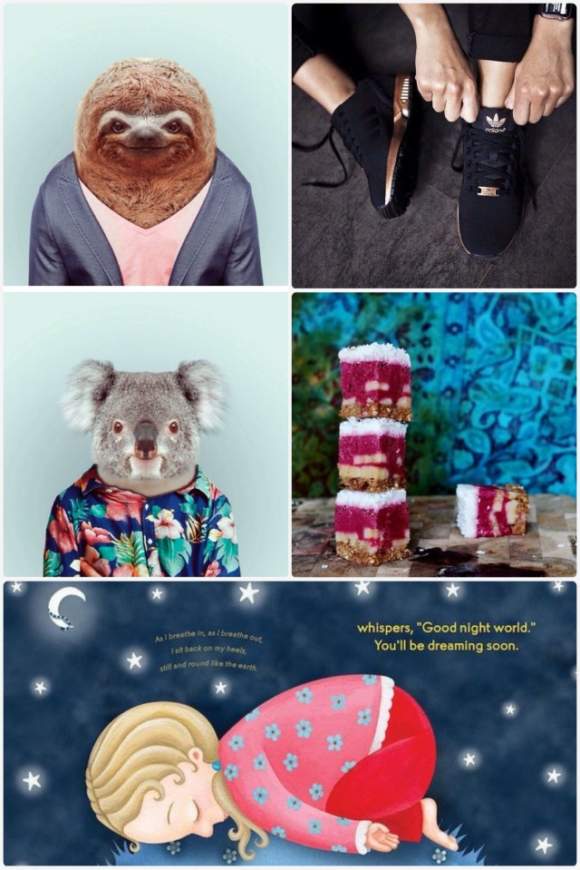 Fab Friday - animals wearing clothes, Adidas black & gold shoes, beetroot raw cake, yoga for kids