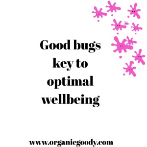 Good bugs key to optimal wellbeing - graphic