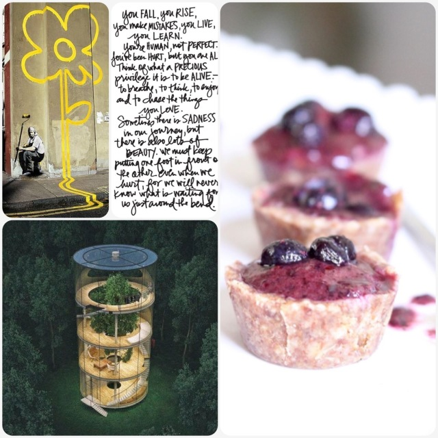 Fab Friday - Banksy flower, you fall you rise quote, epic treehouse/home, raw blueberry cups