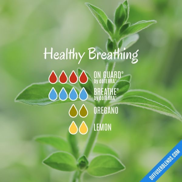 Healthy Breathing diffuser blend recipe. On guard, Easy Air/breathe, oregano, lemon essential oils